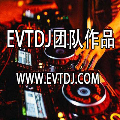 EVTDJ团队作品